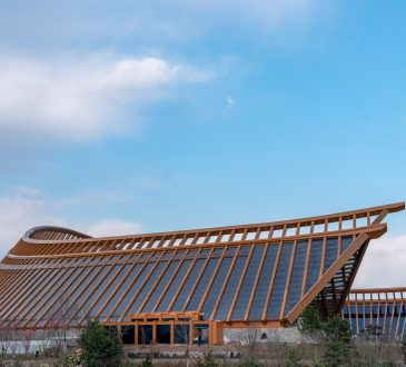 Beijing Expo 2019: Rustic ambient beauty of the China Pavilion