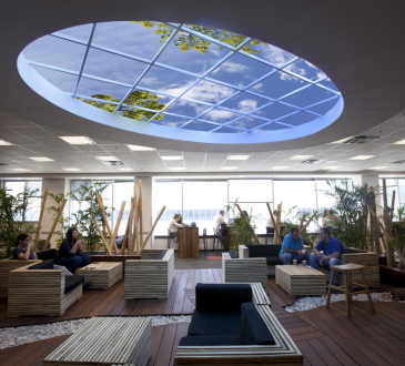 Cultivating wellness in the workplace through interior design