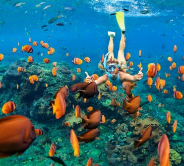 Top six destinations for skill-focused travel